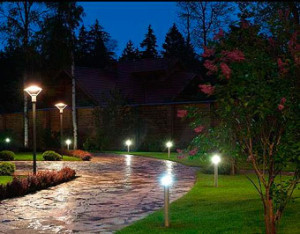 Lighting suburban area with their own hands. Landscape lighting country, land, infield