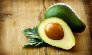 Як правильно самостійно виростити дерево авокадо, в домашніх умовах, з кісточки. Опис та фото.