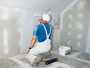 How to prime the walls and choose the primer with your hands? We are helping to understand.