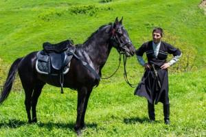 Photos, description Kabarda horse breed, characteristic for home breeding
