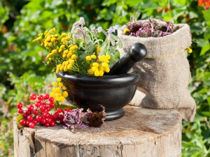 Preparations medicines from herbs, medicinal properties of the workpiece.