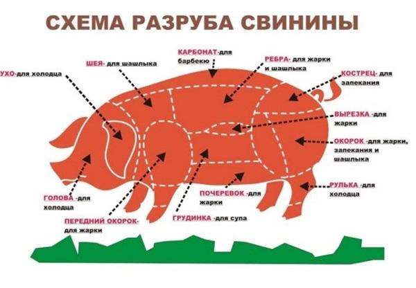 Рис. 4 Схема с кулинарными названиями частей свиньи
