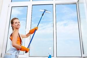 как мыть окна. Щетка