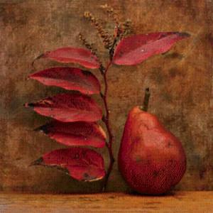 на груші червоніє листя, що робити?