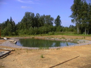 make a fish pond, pond construction for fish farming on the plot