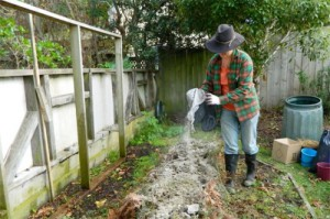 The ideal fertilizer and the enemy of all pests in the garden and in the garden!