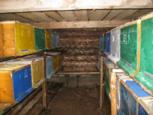 Ventilation at wintering hives indoors in winter. How to make a roof for ventilation in the hive during the winter period, the description and photo