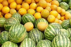 Pinching melons and watermelons, dates, tips, descriptions and photos