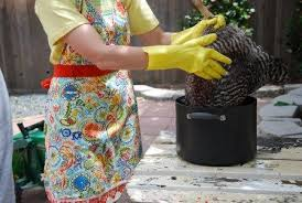 Советы по забою куриц в домашних условиях, фото.