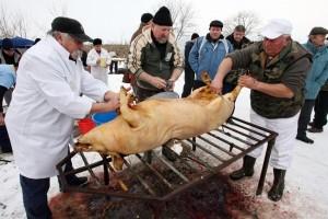 Рис. 1 Подготовка к разбору свиной туши