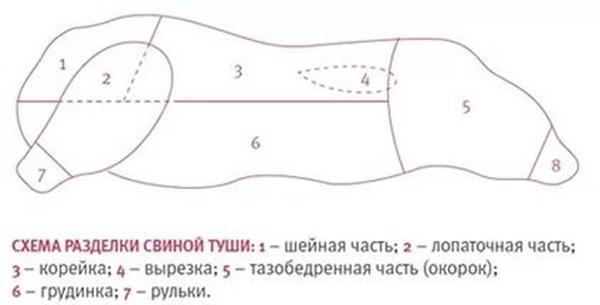 Рис. 3 Схема разделки свиной туши