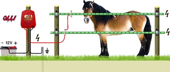 Электропастух для выпаса скота фото